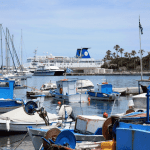 Fishing-Occupations-In-Rhodes-min