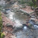 The Flowing Water Of The Seven Springs